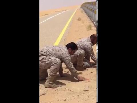 بالفيديو.. إزالة ألغام زرعها متسللون حوثيون في نجران